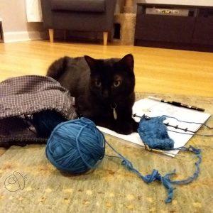 meath pullover by Jill Wolcott & shadow cat