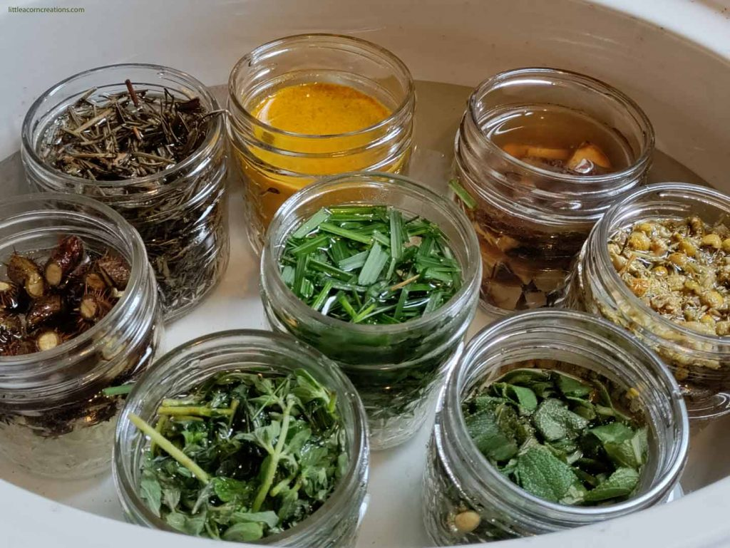 8 jars of foraged plant material in a water filled slow cooker